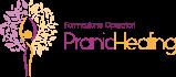 Formazione Professionale per Operatori di Pranic Healing